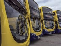 Buses, and more buses